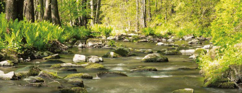 datování Ženevské jezero wi připojte se k městské kanalizaci